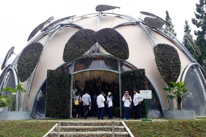 Ecodome Jadi Wahana Edukasi Baru di Kebun Raya Bogor, Begini Isi di Dalamnya