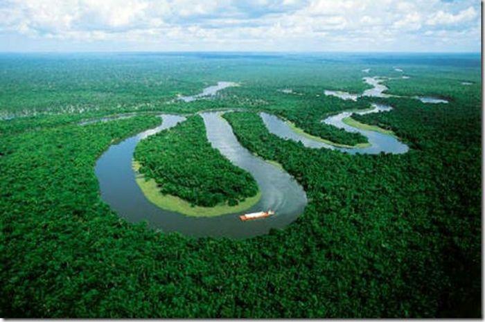Parahnya Kerusakan Hutan Amazon