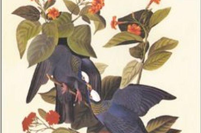 Inilah 10 Buku Paling Mahal yang Pernah Terjual di Dunia (2)