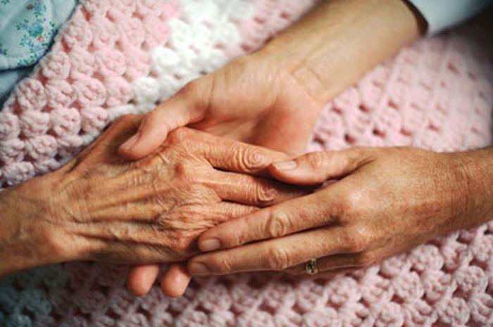 Tangan Indah Ibu