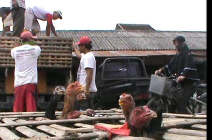 Banjirnya di Jakarta, Ruginya di Solo
