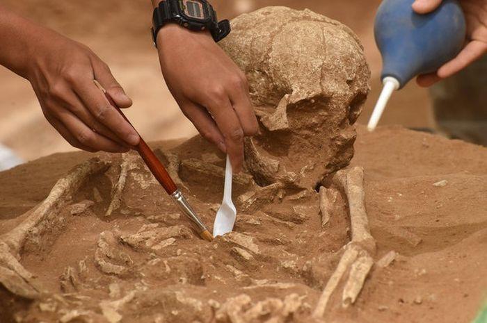 Pemakaman Kuno Ini Disebut Bisa Memecahkan Misteri Alkitab tentang dari Mana Bangsa Filistin Kuno Berasal