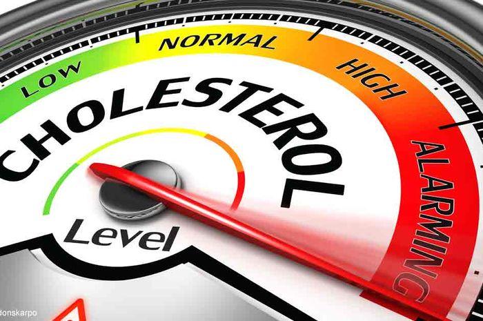 Kolesterol tinggi bisa berakibat penyakit jantung