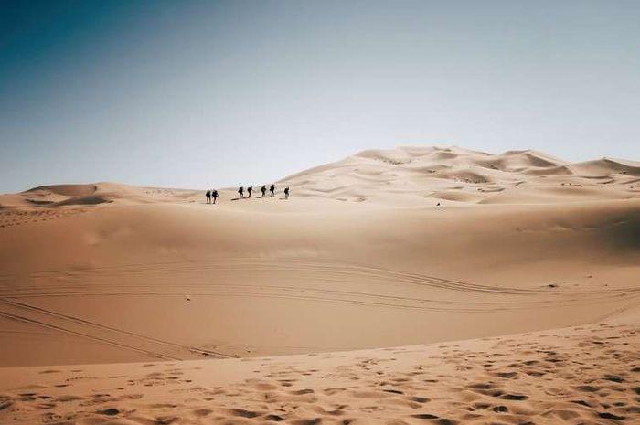 Lomba lari jarak jauh melintasi Gurun Sahara yang panas menyengat.
