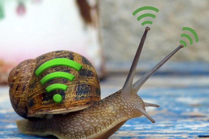 Wifi lemot.