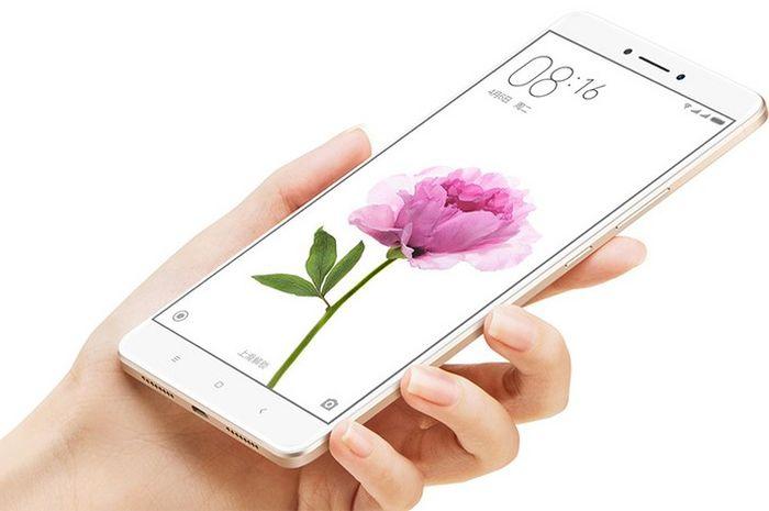 Ilustrasi pakai Xiaomi Mi Max
