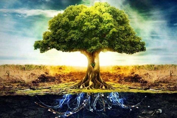 Axis Mundi adalah kesadaran universal yang menghubungkan semua yang ada.