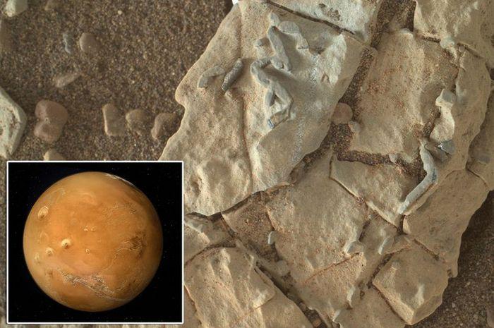 Diduga fosil di planet Mars.