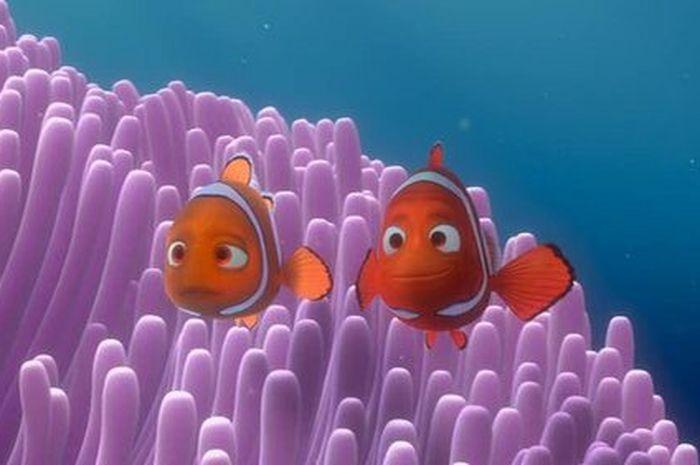 Kenali Hewan Laut Di Film Finding Dory 5 Fakta Menarik Dari Ikan