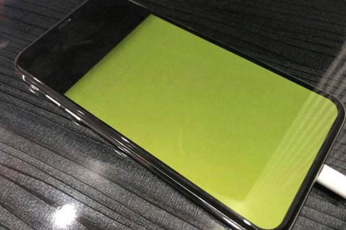 "Pengguna iPhone X di Indonesia Keluhkan Masalah Layar ""Green Screen"""