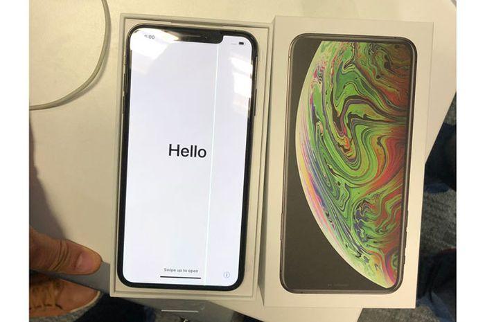 (Foto) Baru Dibuka, iPhone Xs Max Mengalami Cacat Layar Garis Hijau Vertikal