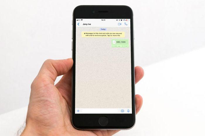 Cara Kirim Gambar di WhatsApp for iOS Tanpa Terkompresi