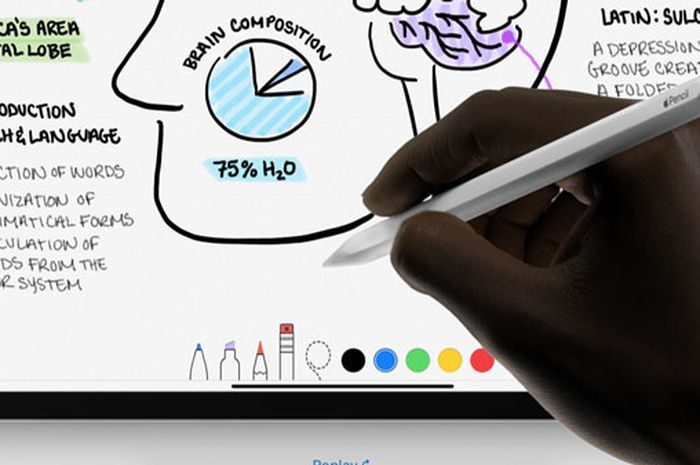 6 Detail Penting di Apple Pencil Generasi 2