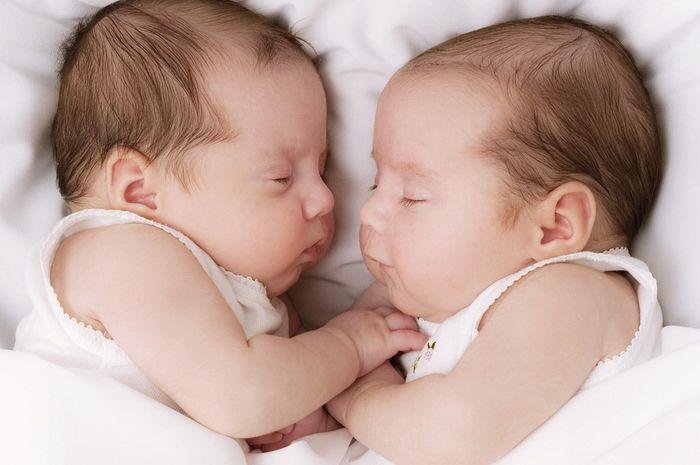 Begini Cara Alami Agar Punya Anak Kembar