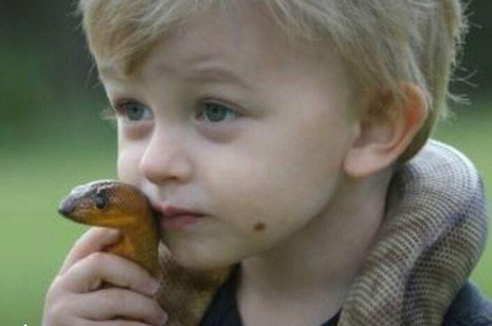 Viral! Penangkap Ular Termuda di Australia Baru Berumur Dua Tahun