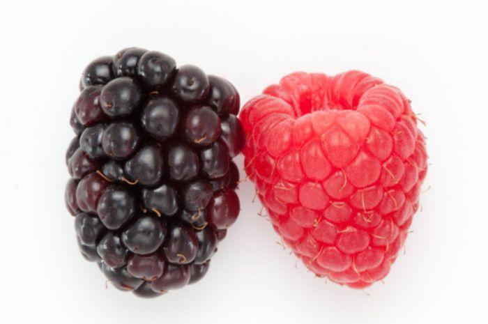Blackberry dan Raspberry. Buah-buah beri mengandung antioksidan (flavonoid dan karotenoid) yang pent