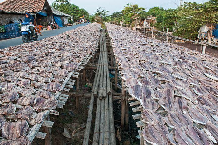 Industri ikan asin di Pabean Udik, Indramayu.