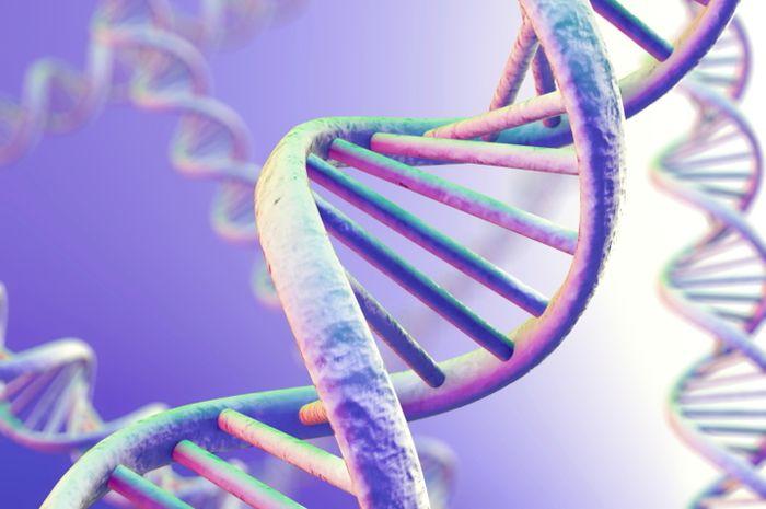 Ilmuwan Inggris Temukan Cara untuk Deteksi DNA Man