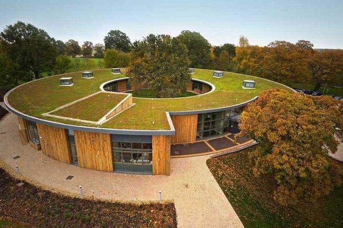 Markas besar British Horse Society yang dikelilingi pohon-pohon oak tua dengan atap ramah lingkungan
