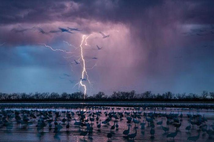 Ketika badai petir di malam hari menyinari langit dekat Wood River, Nebraska.