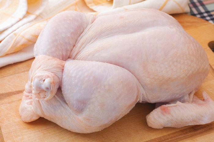 Waspada jika temukan ciri-ciri berikut pada daging ayam