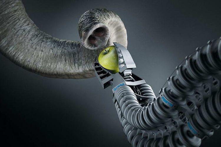 Penciptaan Teknologi Masa Kini yang Terinsiprasi dari Alam Sekitar