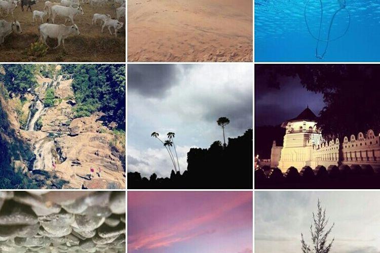 5 Tips Bikin Feed Instagram Kamu Jadi Aesthetic Abis Semua Halaman Hai