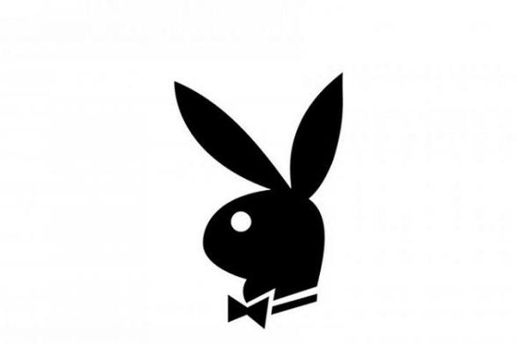 Alasan Kelinci Jadi Simbol Playboy Hai