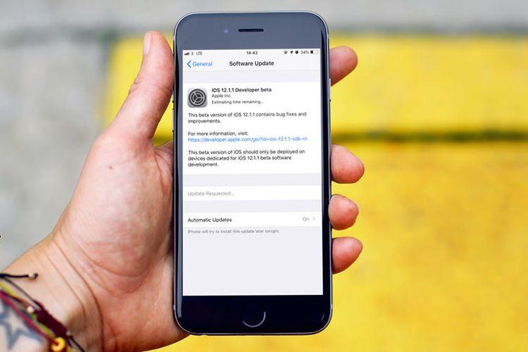 Update iOS 12.1.1 Developer Beta