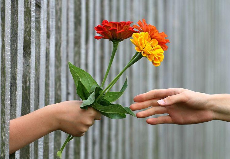Wajib Tahu, Inilah 7 Tip Langgeng dengan Pasangan Walau LDR-an