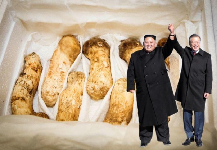 Makin Mantap Ingin Berdamai, Kim Jong-un Kirim Hadiah Senilai Rp19,8 Miliar kepada Korea Selatan