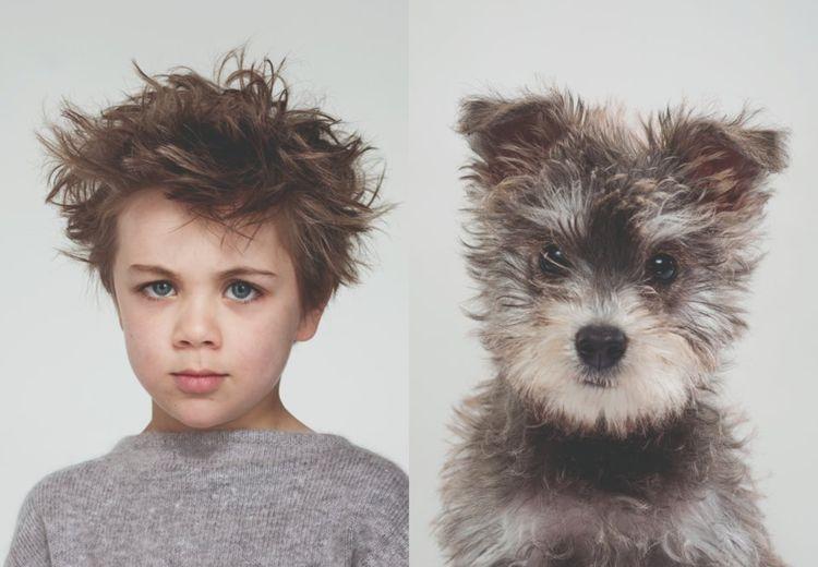 Unik! Seorang Fotografer Hewan Memotret Kemiripan Anjing dan Pemiliknya
