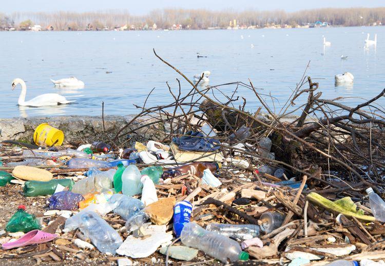 Apakah Bioplastik Dapat Menjadi Solusi Atas Permasalahan Plastik?