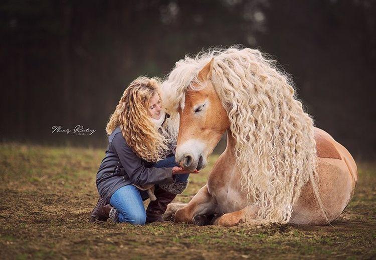 Viral, Kuda dengan Surai Mirip Tokoh Disney Princess Rapunzel Ini Didaulat Jadi Kuda Terpopuler di Dunia