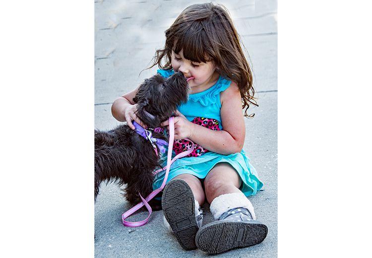 Anjing Membalas Kasih Sayang dengan Menjilat Wajah Pemiliknya, Bagaimana Menurut Kesehatan?