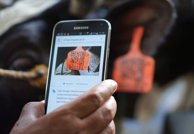 Mulai dari Identitas Sapi Hingga e-Retribusi, Mari Dukung Gerakan Menuju 100 Smart City