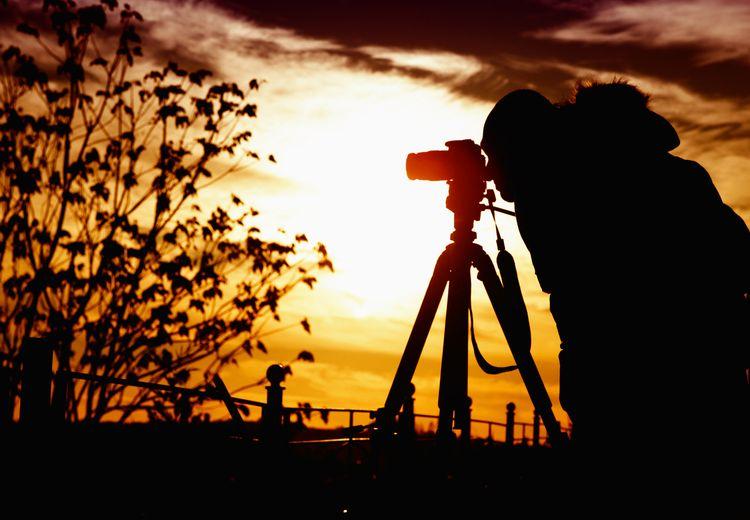 Tak Sekadar Wisata, Lakukan 'Birdwatching' di Taman Nasional Matalawa