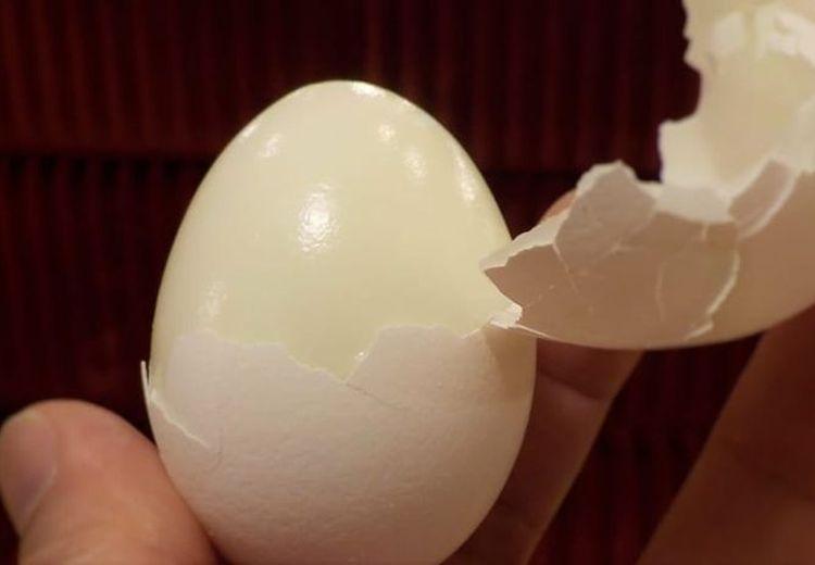 Hasilnya Tak Nihil! Menghindangkan Menu Telur Saat Sarapan Bisa Buat Tubuh Begini