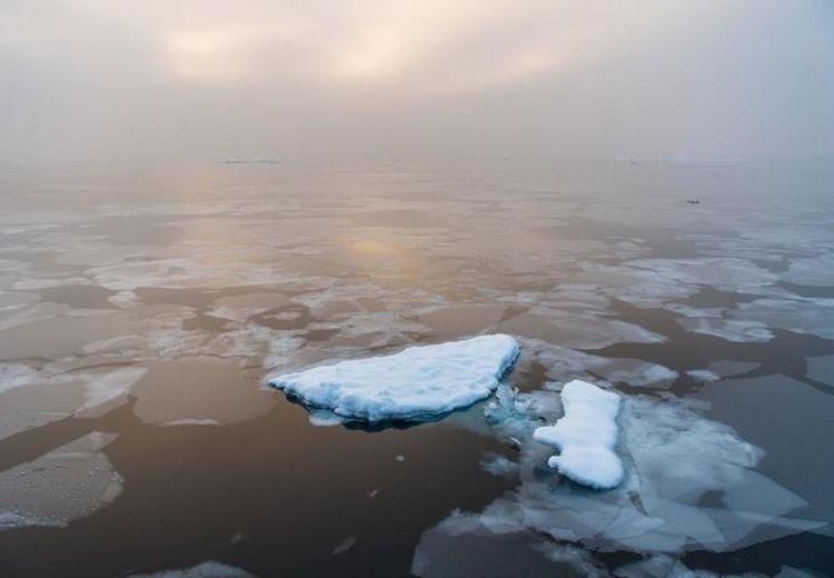 Krisis Iklim, Es di Arktika Terancam Menghilang Pada 2035