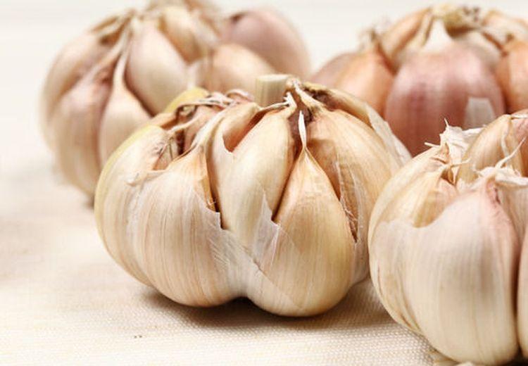 Benarkah Bawang Putih Bisa Bantu Bakar Kalori di Tubuh? Begini Penjelasannya