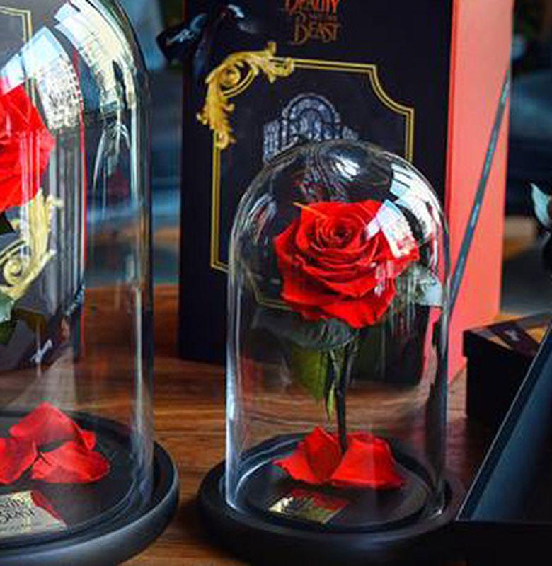 Forever Rose Mawar Yang Bisa Bertahan Selamanya Bobo