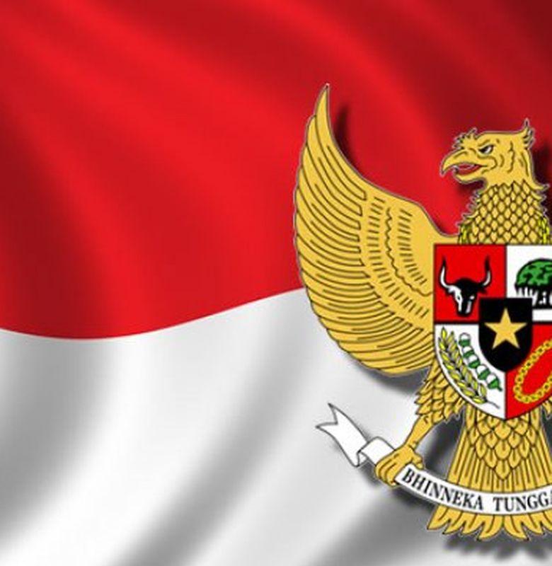 Mengapa Burung Garuda Bisa Dijadikan Simbol Negara Indonesia Bobo