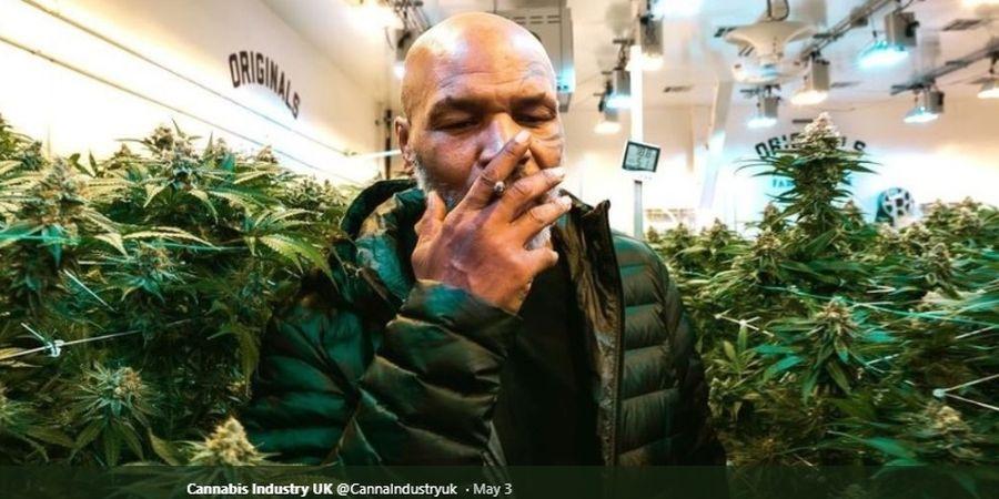 Kisah Mike Tyson Menyerahkan Diri, Saat Sang Polisi Ogah Menahannya