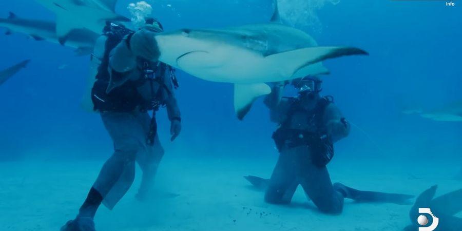 VIDEO Ciamik Mike Tyson Saat Bikin Ikan Hiu Besar Kelenger di Lautan!