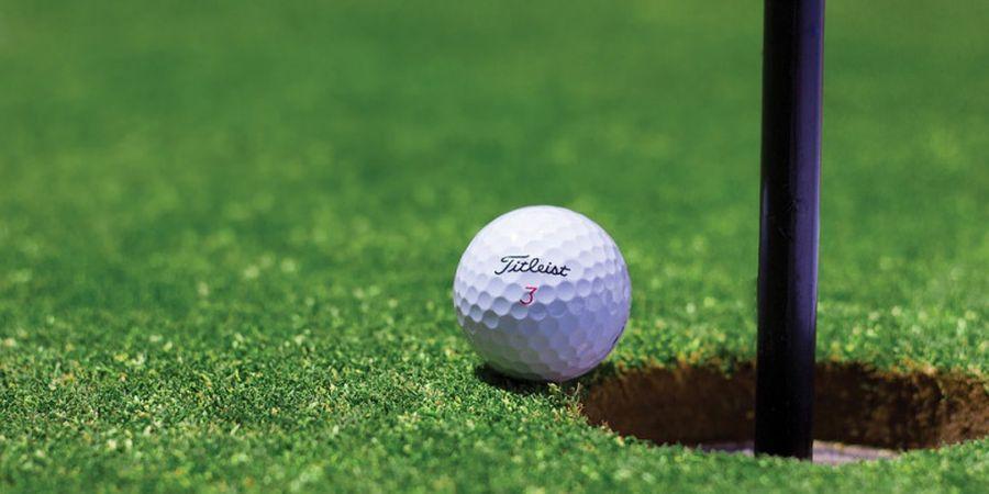 Mengetahui Lebih Dalam Isi dari Bola Golf