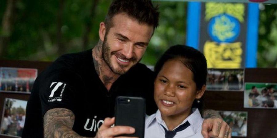 Hobi Baru David Beckham Bukan Ternak Ikan Cupang Tetapi Lebah