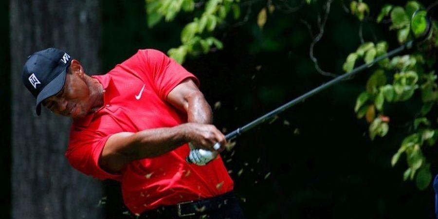 David Feherty: Tiger Woods akan Meraih Gelar Mayor di Tahun 2019