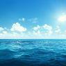 Akibat Meningkatnya Suhu Laut, Hewan Ini Semakin 'Berisik'