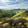 Taman Nasional Komodo Batal Ditutup, Tapi Mengapa Warga Malah Bingung? Inilah Penjelasannya...