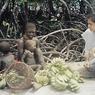 Ingat Suku Terasing Sentinel? Rupanya Ada yang Berhasil Ke Pulaunya